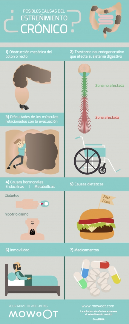 infografia sobre las causas del estreñimiento